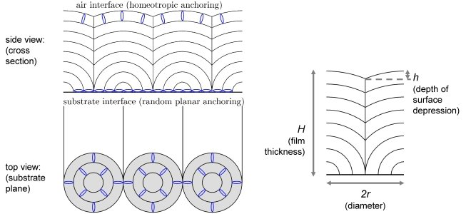 Fig. 1: Left: schematic cross section through a row of focal conic domains and top view on the substrate plane; the blue ellipses symbolize the liquid-crystal molecules and the curved black lines the smectic layer planes. Right: dimensions of a single focal conic domain; diameter2r and film thickness H are typically between some μm and a few tens of μm, the depth h of the depressions in the air interface can amount up to one or two μm.