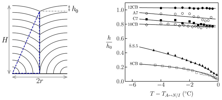 Fig. 6: Left: Relation between film thickness H, FCD diameter 2r, and depth h0 of the surface depression for strictly incompressible layers. Right: Temperature dependence of the ratio h/h0 (h: measured depth of the FCD-induced surface depressions, h0: calculated values assuming incompressible layers) in 40 μm thick films of various liquid crystal compounds. The four upper data sets belong to compounds possessing a smectic-A–isotropic transition, the two lower data sets belong to compounds possessing a smectic-A–nematic transition.TA↔N/I designates the smectic-A–nematic or smectic-A–isotropic transition temperature (solid lines are just guides to the eyes).