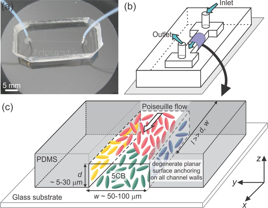 Fig. 1: (a) Microfluidic channel fabricated by bonding a PDMS relief on a glass substrate. (b) Schematic representation of the microfluidic channel. (c) Magnified view of a sample region within the channel. Different colours of the nematic molecules indicate the degenerate planar surface anchoring on each of the channel walls.