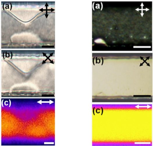 Fig. 5: Random planar anchoring (left column) and unidirectional planar anchoring (right column) in microchannels. The alignment in the unidirectional case is parallel to the channel axis. a,b: Polarizing microscopy images with two different orientations of the crossed polarizers. c: Fluorescence confocal polarizing microscopy images (laser polarization indicated by the doubleheaded white arrow). The high fluorescence signal (yellow color) confirms the alignment of the liquid crystal molecules along the channel axis. Scale bars correspond to 15 μm (left column) or 20 μm (right column).