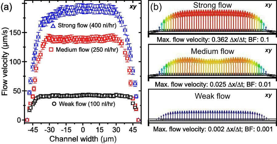 Fig. 7: Flow profiles of the weak, medium, and strong flow regimes. (a) Experimental flow profiles at the half-depth of the channel. One stream flow is dominant in the low and high flow regimes. Two stream flow is observed in the medium flow regime. (b) Flow profiles at half-depth for the three regimes obtained from numerical modeling.