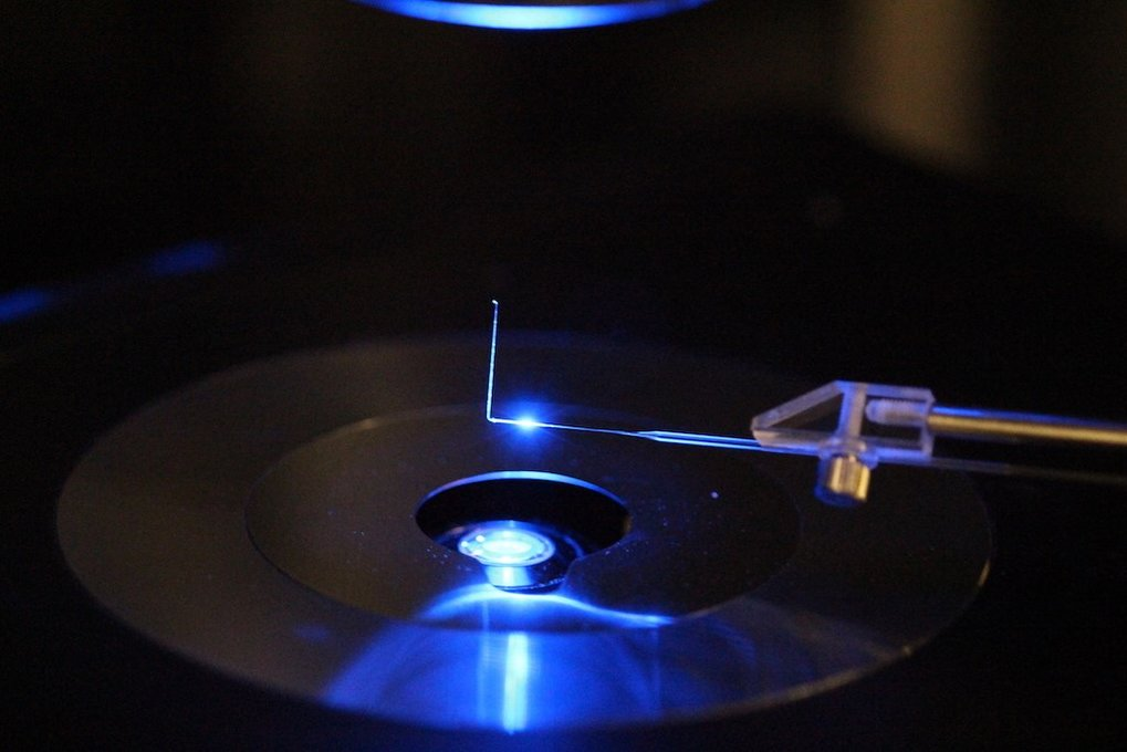 Micropipette force sensor under the optical microscope