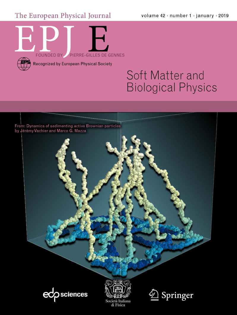 "The recent publication of Jérémy Vachier and Marco Mazza with the title ""Dynamics of sedimenting active Brownian particles"" has been published in the January issue of the European Physical Journal E - Soft Matter and Biological Physics. The perspective view of the 3D motion of particles impressed the editors such they selected the image for the front cover of the Journal."