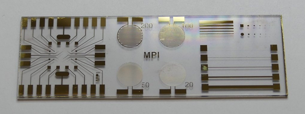 Gold microelectrodes on a glas substrate realized with laser ablation for life sciences