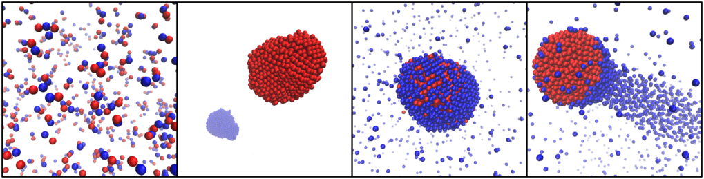 Mixtures of producer and consumer particles can self-organize in many ways. From left to right: formation of small self-propelled molecules composed of just a few particles; complete separation of producers and consumers into distinct clusters; aggregation into a static cluster with precise composition; aggregation into a self-propelled comet-like cluster.